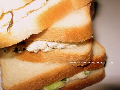 sandwich al pollo e insalata